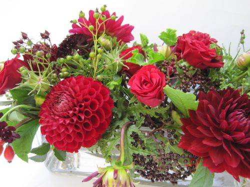 red centerpiece with elderberries and dahlias, Françoise Weeks