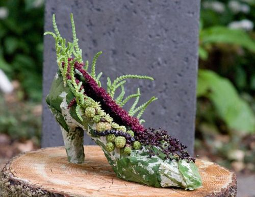 botanical shoe with blackberries and succulents, Françoise Weeks