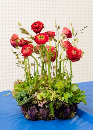 red ranunculus in artichoke container, Françoise Weeks