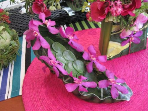botanical shoe with mask foliage, succulents and orchids, Nambe in bridgeport, Françoise Weeks