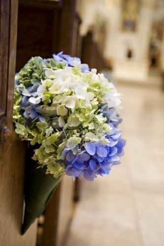 hydrangeas in cone, St Mary's Cathedral Francoise Weeks