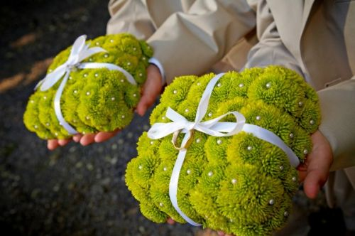 ring bearer pillow made with kermit mums, Youngberg vineyard, Françoise Weeks