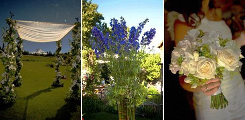 ppah decoration, topiary, bridal bouquet, Mt Hood bed&breakfast, Françoise Weeks