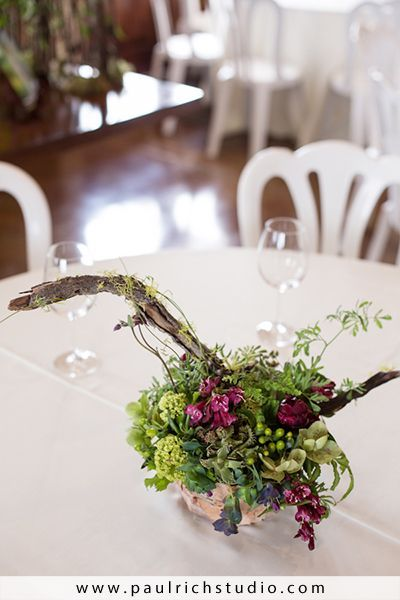 woodland centerpiece with succulents, viburnum, Methven winery, Françoise Weeks