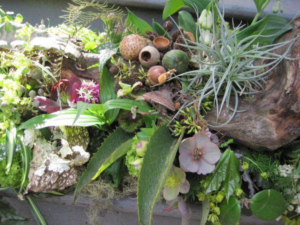 b woodland arrangement with hellebore, viburnum, herbs, berries, ferns, lily of the valley, Françoise Weeks