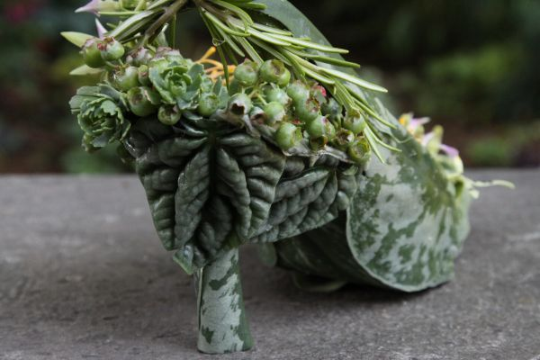 botanical shoe with blueberries, succulents,orchids, Françoise Weeks