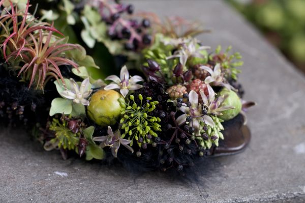 botanical shoe with blackberries, elderberries, persimmon, succulents, Françoise Weeks