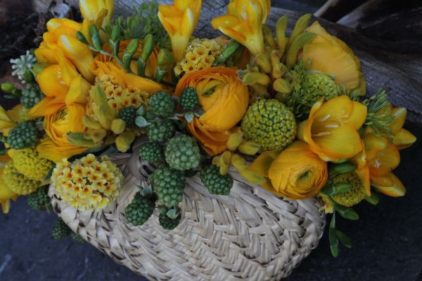 bridesmaid's bouquet with yellow flowers and blackberries, Françoise Weeks