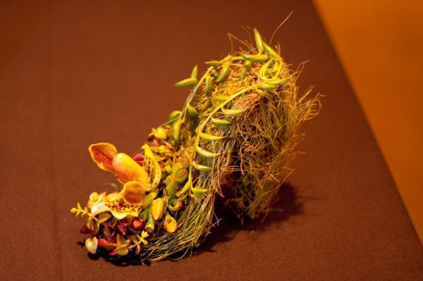 wire botanical shoe  with orchids, succulents and ferns, Portland Art Museum, Françoise Weeks