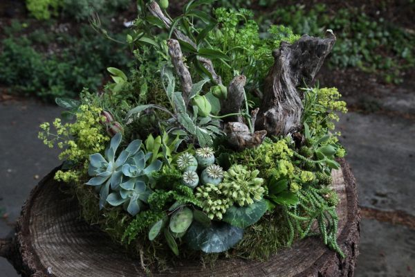woodland arrangement with herbs and texture, Françoise Weeks