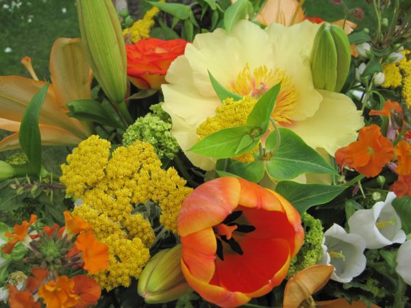 yellow peonies and tulips in archway decorations, McMinnemins Edgefield, Françoise Weeks
