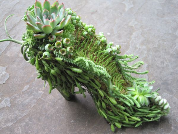 wire shoe decorated with succulents, Françoise Weeks