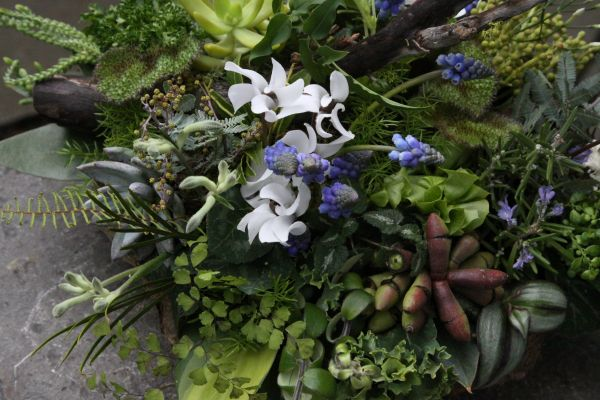 woodland centerpiece with muscari and cyclamen, Françoise Weeks