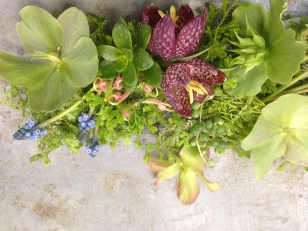 botanical scarfr with hellebore, muscari and fritillaria, Françoise Weeks