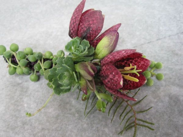 fritillaria boutonnier with texture 2, Françoise Weeks