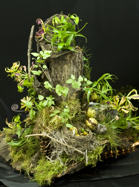 woodland arrangement, Françoise Weeks