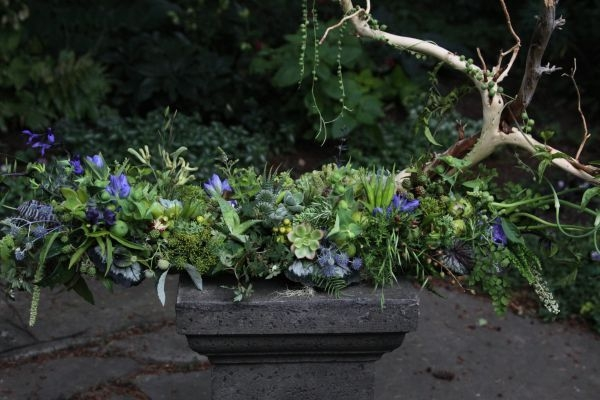 woodland centerpiece with blue accent 1, Françoise Weeks