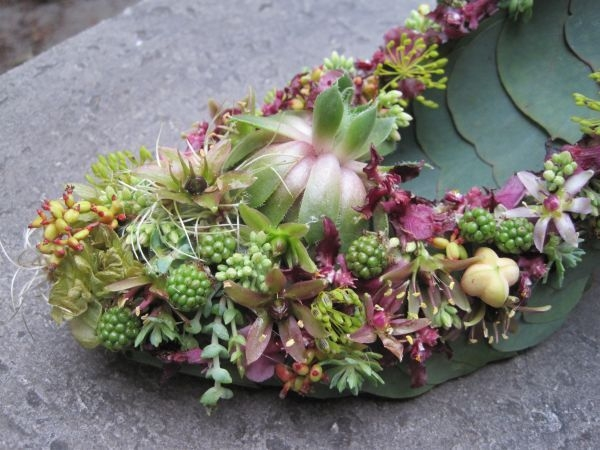 botanical shoe with blackberries, succulents,orchids, detail,Françoise Weeks
