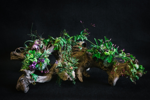 woodland arrangement on root structure, Francoise Weeks