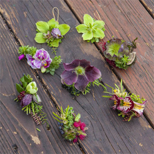 botanical rings and earrings 12, Francoise Weeks