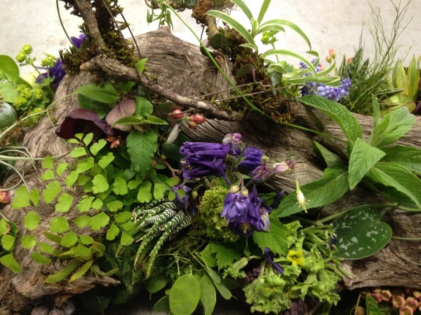 woodland arrangement with muscari, hellebore, enkianthus, primroses, columbine, tulips, maidenhair ferns, poppy pods and textures, 1 Francoise Weeks
