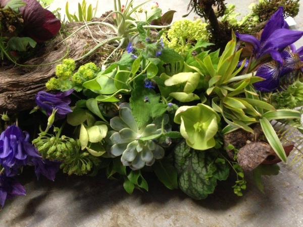 woodland arrangement with muscari, hellebore, enkianthus, primroses, columbine, tulips, maidenhair ferns, poppy pods and textures, 6 Francoise Weeks
