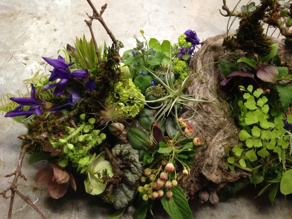 woodland arrangement with muscari, hellebore, enkianthus, primroses, columbine, tulips, maidenhair ferns, poppy pods and textures, Francoise Weeks