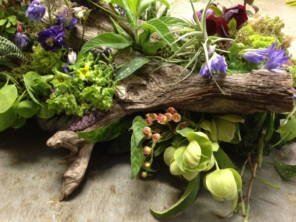 woodland arrangement with muscari, hellebore, enkianthus, primroses, columbine, tulips, maidenhair ferns, poppy pods and textures,5 Francoise Weeks