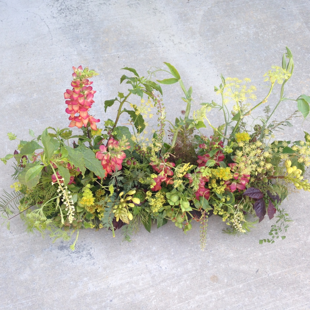 textured arrangement with digitalis, Francoise Weeks