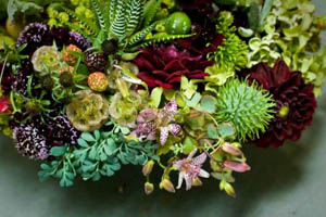 burgundy flowers and succulents, Françoise Weeks