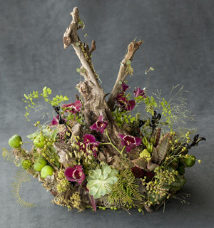 woodland centerpiece with orchids, Françoise Weeks