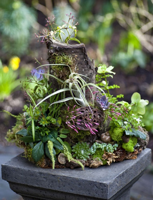7-woodland centerpiece, Francoise Weeks - photo Ted Mishima