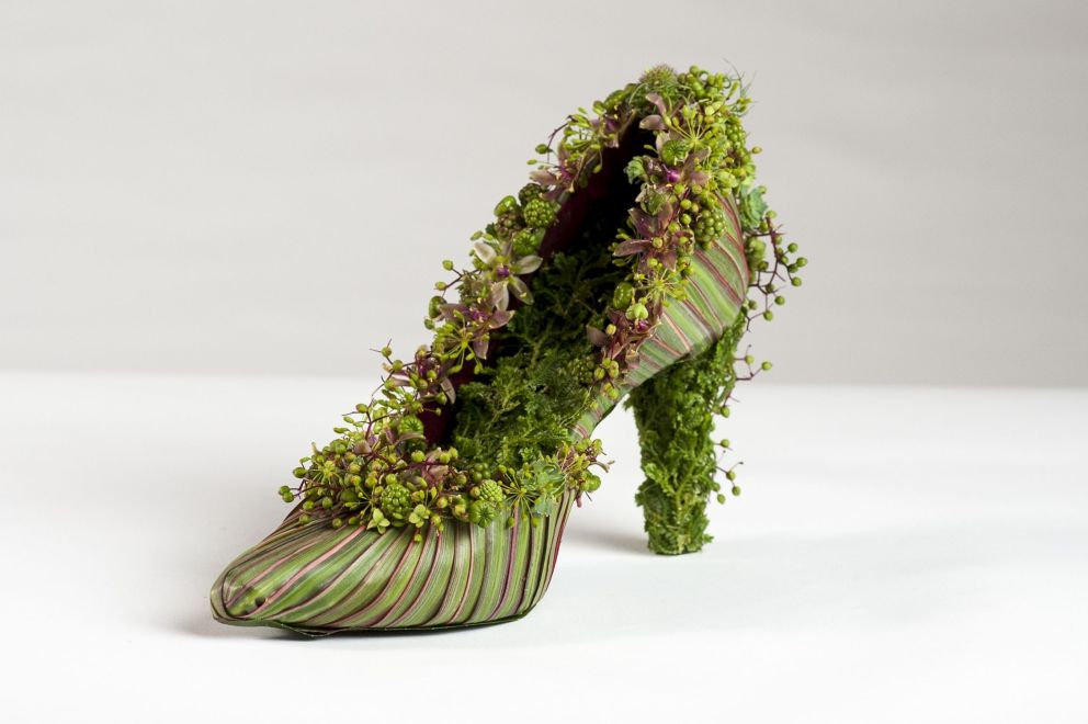 botanical shoe with dracena leaves and texture, Francoise Weeks